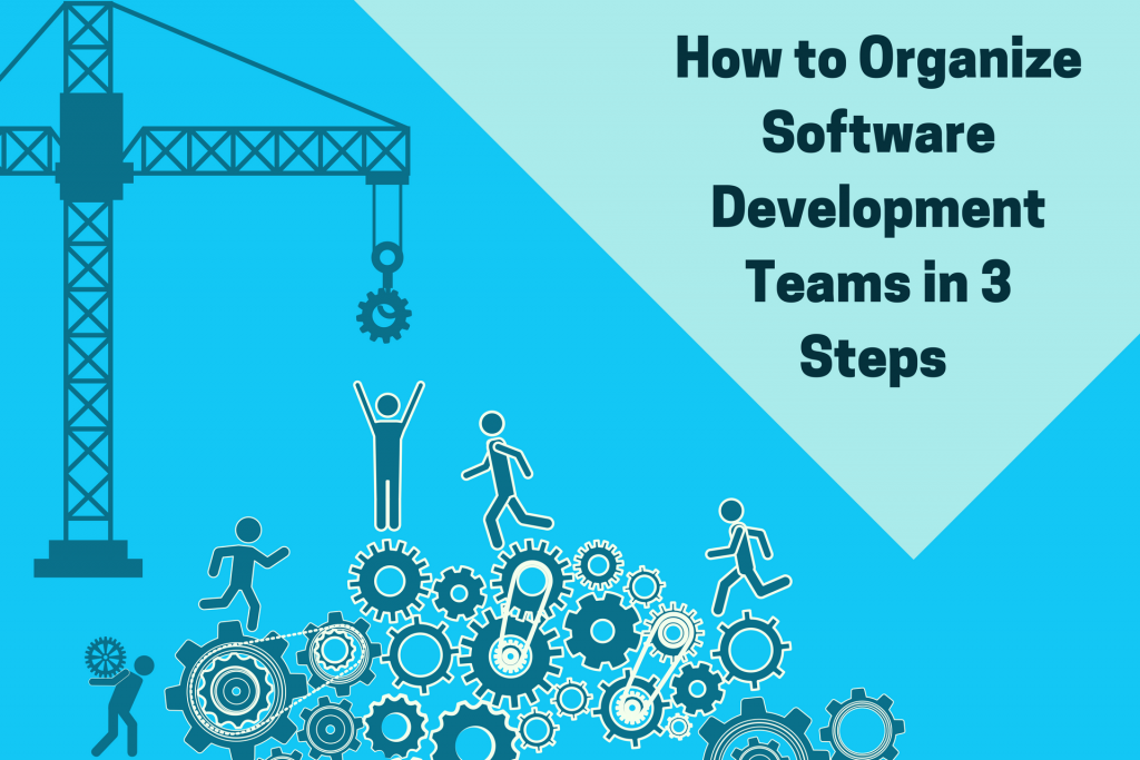 how to organize softwrae development teams